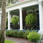 Front Porch With Hanging Ferns Everywhere