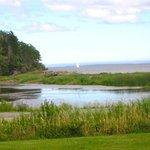 View of the marsh/beach