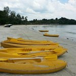 The kayak - only S$14 per hour for two persons