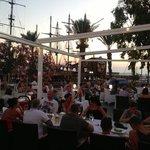 Aphrodite terrace 2