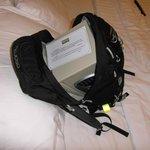 Safe do easy fit in backpack