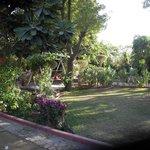 Lovely, shaded restful garden