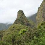 Iao Valley - Tolle Fauna und Flora