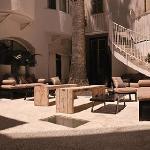 Palm Tree Patio