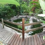 Schöne Gartenanlage mit Teich