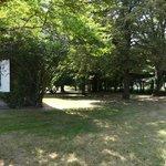 parc aux arbres centenaire