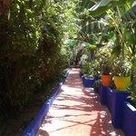 Jardins of Majorelle