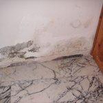 Damp in main bedroom