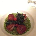 noix de Saint-Jacques sur risotto et kale croustillant