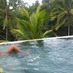 la piscine de chaque villa: je flotte sur la jungle