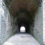 Tunnel of northern vomitorium