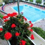 La piscina, vista dal terrazzo, tutto sempre accuratissimo