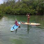 mangrove maze at LBK