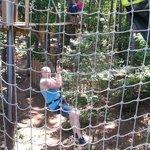 First Tarzan Swing