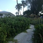 walking path from beach to condo