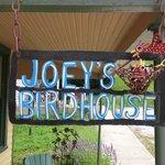 Joey's Bird House