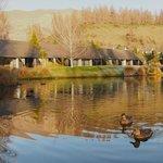 Edgewater duck pond