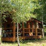 Cabin n. 4