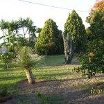 Jardim do Damanse