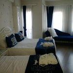 Room 214, Sarnic Premier