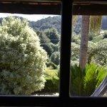 da janela para exterior