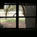 Einziges Fenster Zimmer 5