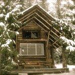 Deer Cabin in Winter