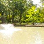 Beautiful Nature! Mercer Arboretum & Botanic Gardens