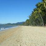 palm beach idyllic