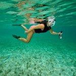 Snorkeling Grace Bay (72304609)