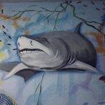 Shark! lol
