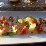 Carpaccio von Bernsteinmakrele mit Zitronen-Vinaigrette und Tomaten Sorbet