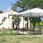Photo de Agriturismo Santa Maria del Gallo