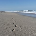 Photo of Walton Rocks Beach