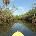 Kayak Tour auf dem St. Lucie River