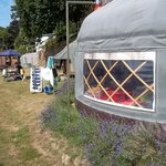 Ship Ahoy, with mini yurt and Potato Shed in background