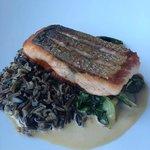 Salmon and wild rice