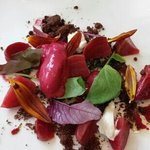 First course - Beets