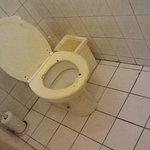 Filthy toilette
