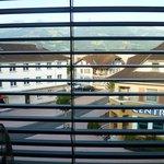 Чудесный вид  из окна на Швейцарские Альпы