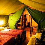 A cozy Tented accommodation