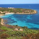 Wild Asinara Park