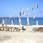 north west beach:taverna fishes