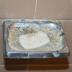 Pet soap dish