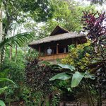 The Balsa cabin
