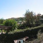 Foto di Giardini di Altea