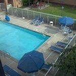 Nice, clean pool.