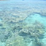 dal pontile per immergersi a fare snorkeling