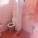 The spacious bathroom AND with a shower head holder, where most places in Greece do not have!