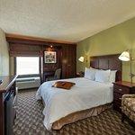 King bedded guestroom